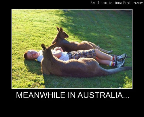 Meanwhile In Australia Best Demotivational Posters