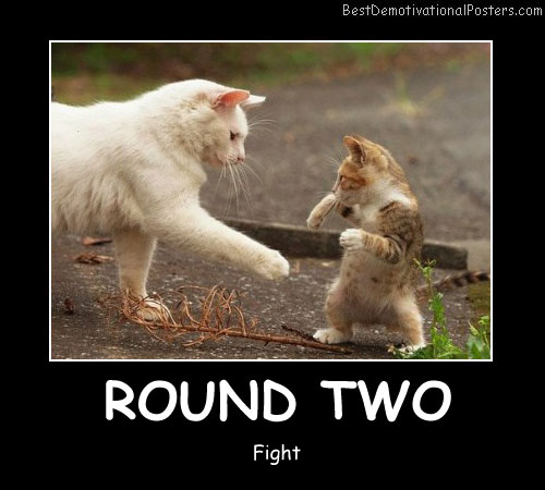 Round Two Funny Poster