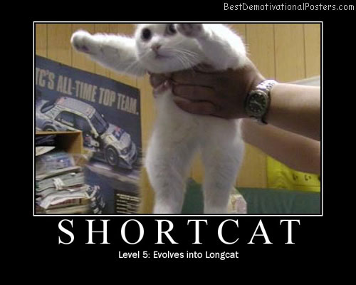 Shortcat Best Demotivational Posters