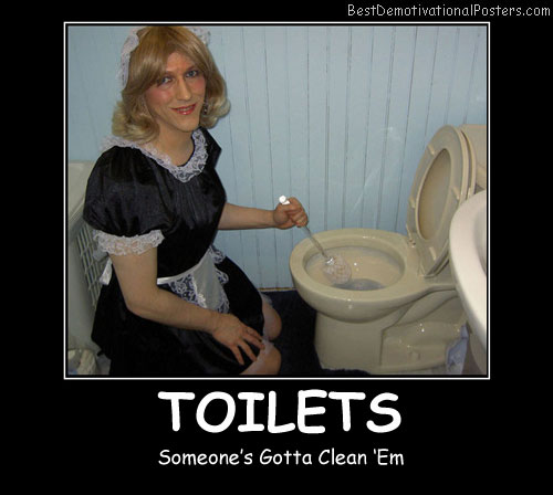 Toilets Cleaning Best Demotivational Posters