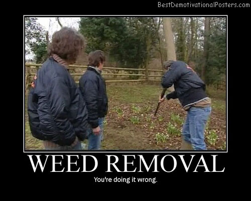 Weed Removal Best Demotivational Posters