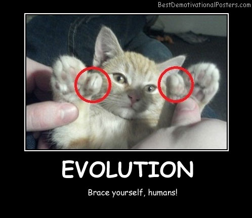 Evolution Best Demotivational Posters