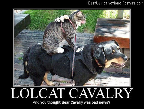 Lolcat Cavalry Best Demotivational Posters