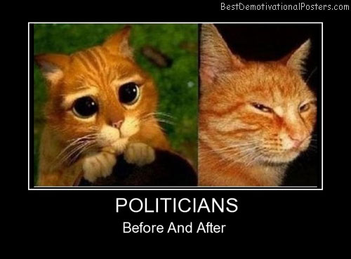 Politicians Best Demotivational Posters