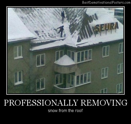 Professionally Removing Snow Best Demotivational Posters