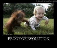 Proof of Evolution