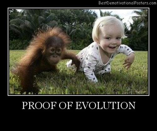 Proof Of Evolution Best Demotivational Posters