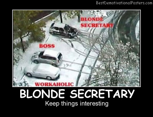 Blonde Secretary Best Demotivational Posters funny
