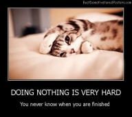 Doing Nothing Is Very Hard Best Demotivational Posters