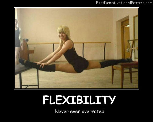 Perfect Flexibility Best Demotivational Posters
