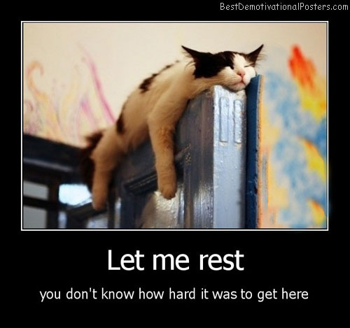 Let Me Rest Best Demotivational Posters