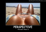 The Best Perspective