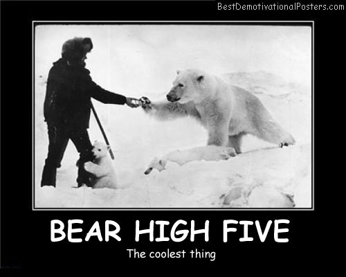 Bear High Five Best Demotivational Posters