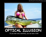 Optical Illusion Fish