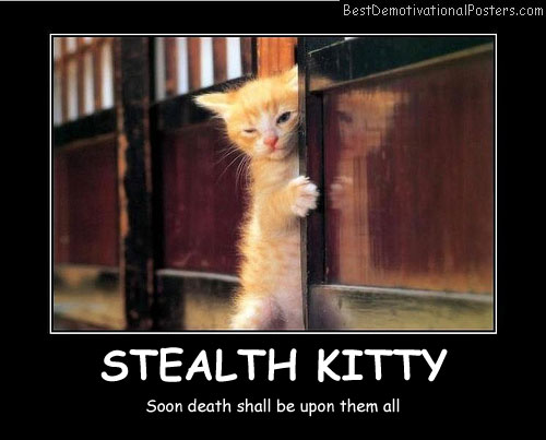 Stealth Kitty Best Demotivational Posters