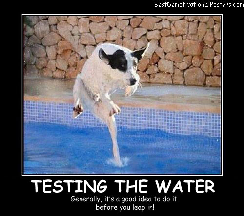 Testing The Water Best Demotivational Posters funny