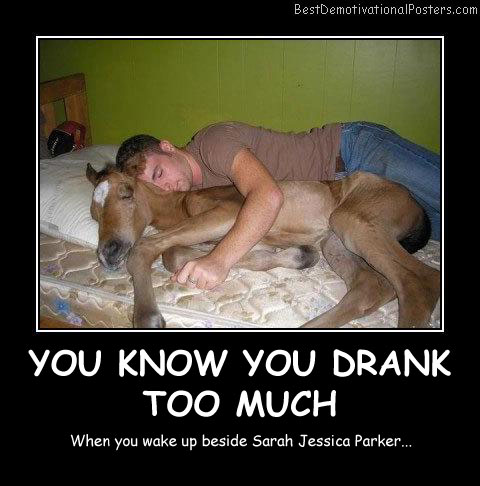 You Know You Drank Too Much Best Demotivational Posters