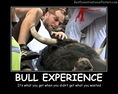 Bull Experience Best Demotivational Posters