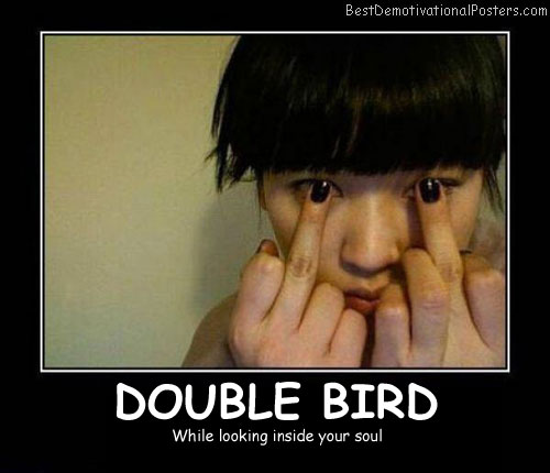 Double Bird Best Demotivational Posters