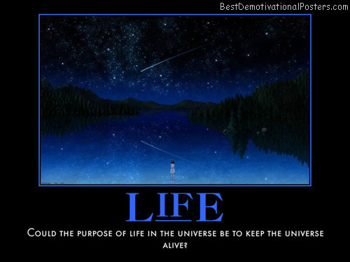 The Purpose Of Life Best Demotivational Posters