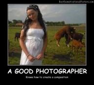 A Good Photographer