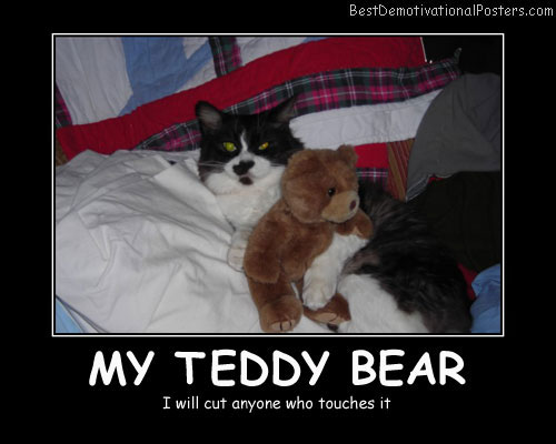 Teddy Bear, cat Poster