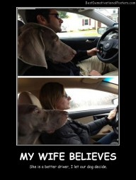 My Wife Believes