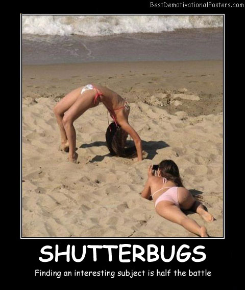 Shutterbugs Best Demotivational Posters
