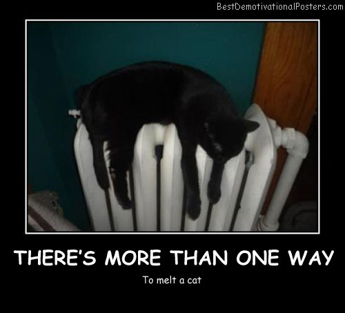 Black Cat Way Best Demotivational Posters