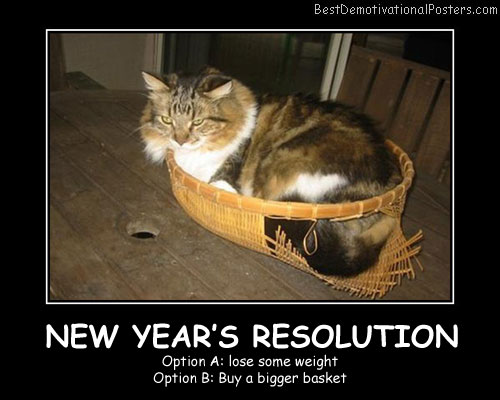 New Year's Resolution Best Demotivational Posters