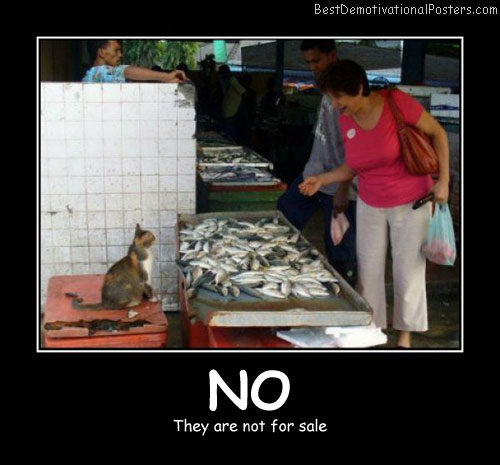 No They Are Not For Sale Best Demotivational Posters