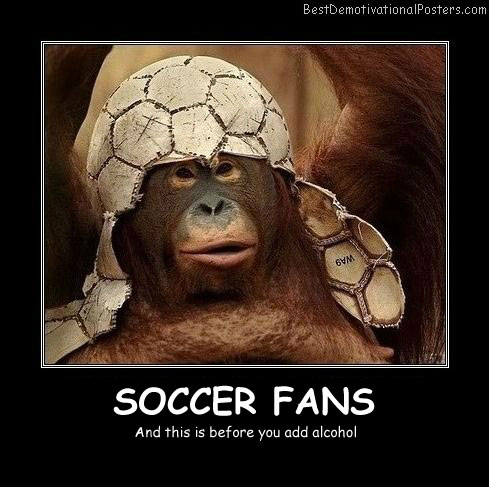 Soccer Fans Best Demotivational Posters