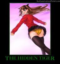 The Hidden Tiger Anime