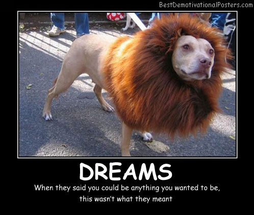 Lion funny dog Demotivational Posters