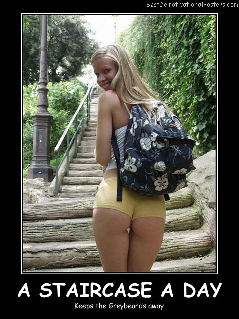 A Staircase A Day Best Demotivational Posters
