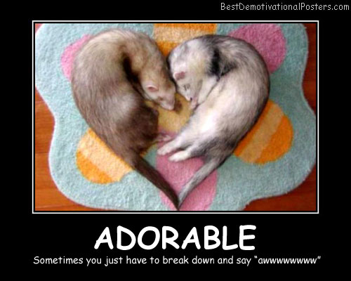 Adorable Best Demotivational Posters