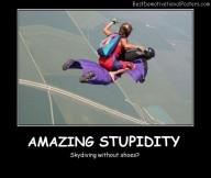 Amazing Stupidity