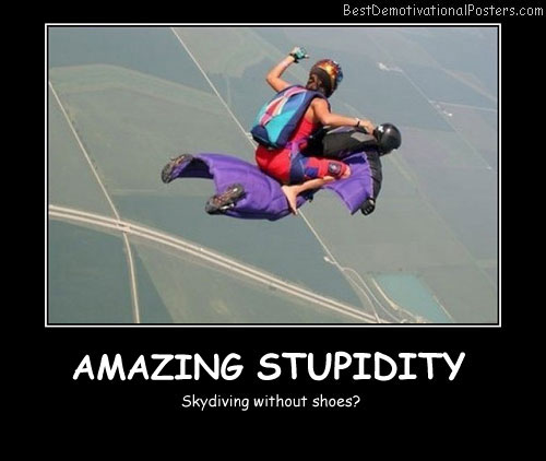 Amazing Stupidity Best Demotivational Posters
