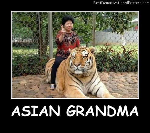 Asian Grandma Best Demotivational Posters