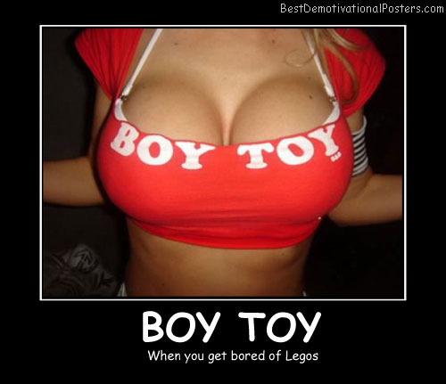 Boy Toys Legos Best Demotivational Posters