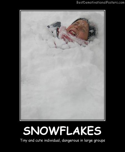 Snowflakes Best Demotivational Posters