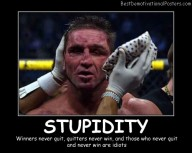 Stupidity Never Quit Best Demotivational Posters