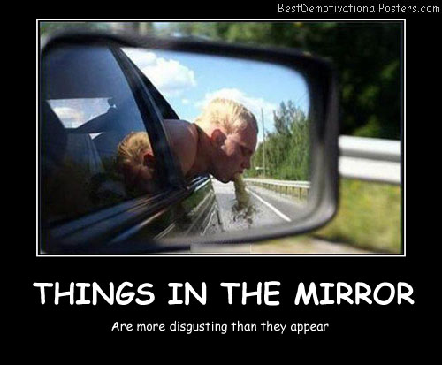 Things In The Mirror Best Demotivational Posters