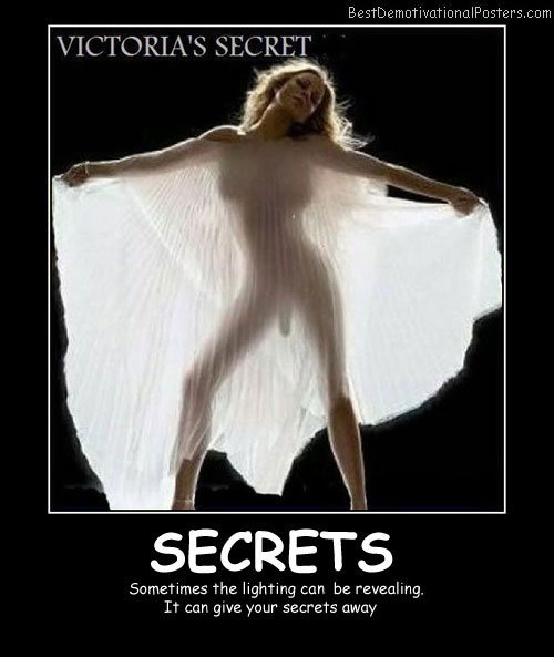 Victoria's-Secret-Best-Demotivational-Posters