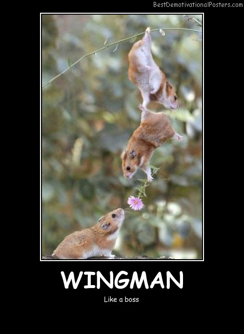 Wingman funny Best Demotivational Posters