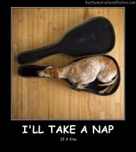 I'll Take A Nap