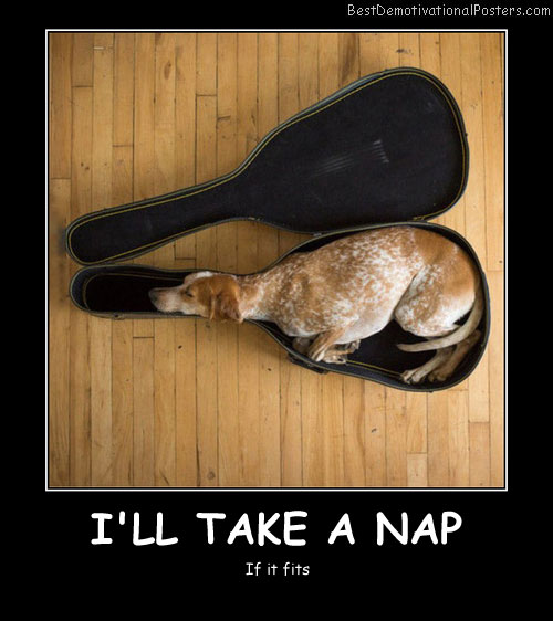 I'll Take A Nap Best Demotivational Posters