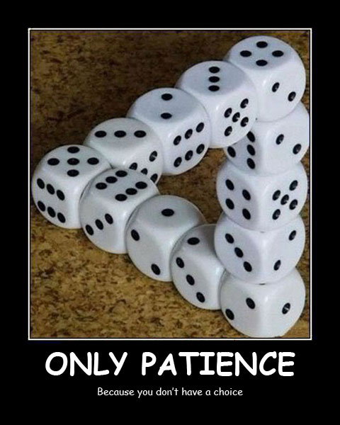 Only Patience Best Demotivational Posters