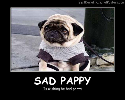 Sad Pappy Best Demotivational Posters