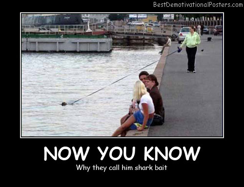 Shark Bait Best Demotivational Posters